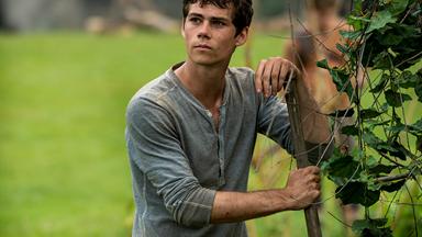 "Updated: 'Maze Runner' star, Dylan O'Brien ""severely injured"" on set"