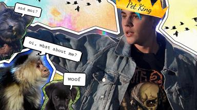 Justin Bieber might adopt a new pet that could actually eat him
