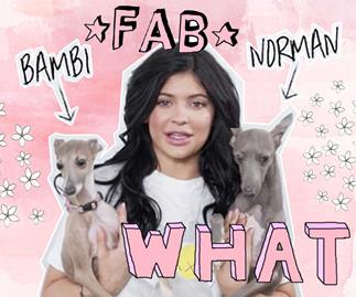 Norman Bambi, Kylie Jenner