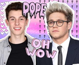 Shawn Mendes and Niall Horan are making music together