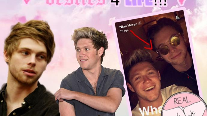 Niall Horan and Luke Hemmings catch up on Snapchat
