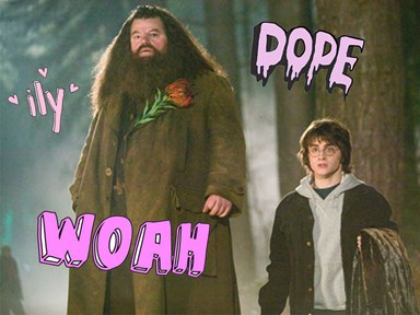Harry Potter director has a *huge* Hagrid regret, and we totally agree