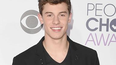 Shawn Mendes doppelganger will totally shock you