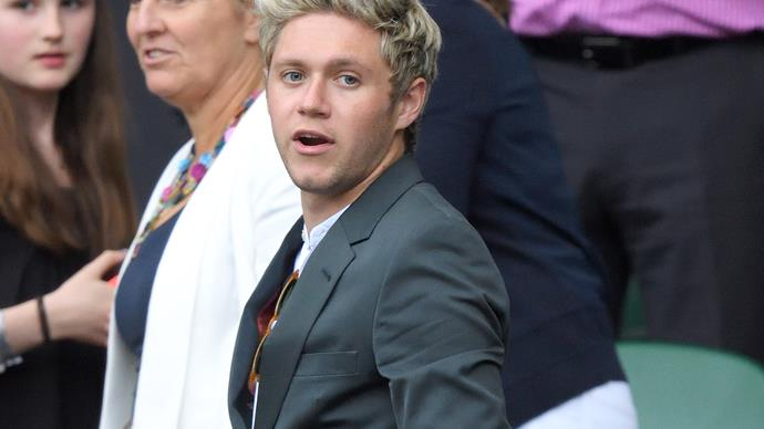 Niall Horan never dated Celine Helene Vandycke