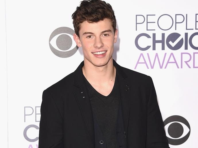 Shawn Mendes just confirmed his relationship status