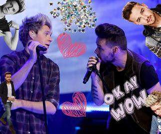 Liam Payne and Niall Horan just reunited in the most epic way