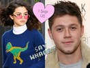 Niall Horan just admitted Selena Gomez was his first crush and we can't deal