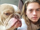 Dylan Sprouse and his GF celebrated their pupper's birthday in the cutest way