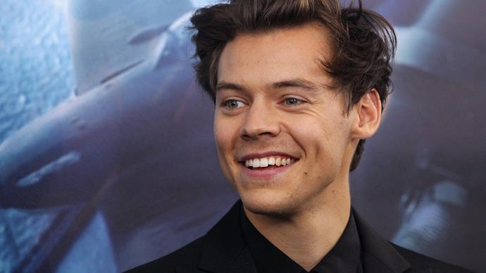 Harry Styles proves he's an actual knight in shining armour as he defends his fans