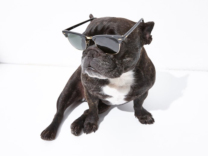Day 6: Every man and his dog knows a pair of Ray-Bans are classic.