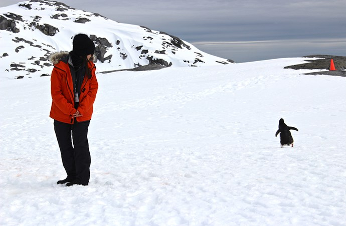 "<em>""Penguin crossing. Visitor regulations to Antarctica require you to remain at least 5 metres from penguins. The rules, however don't preclude a curious penguin from approaching you closer than five meters – as long as the bird makes the first move.""</em>"