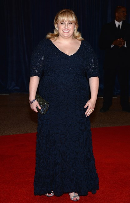 Rebel Wilson at White House Correspondents' Dinner 2013 wearing Theia dress, House of Lavande jewelry and Swarovski clutch
