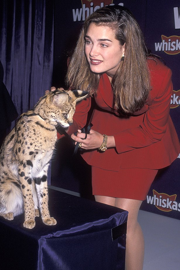 It's 1992 and Brooke Shields is working the room with a red power suit and a small cheetah.