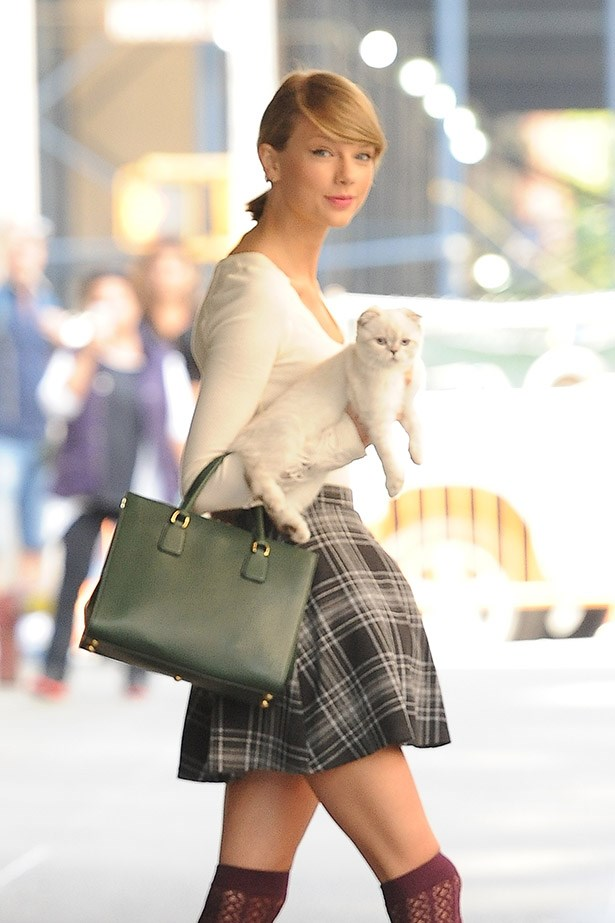 """Taylor Swift, who dotes on her two cats Olivia Benson and Meredith Grey (!) once tweeted """"It is a daily struggle to not buy more cats."""""""