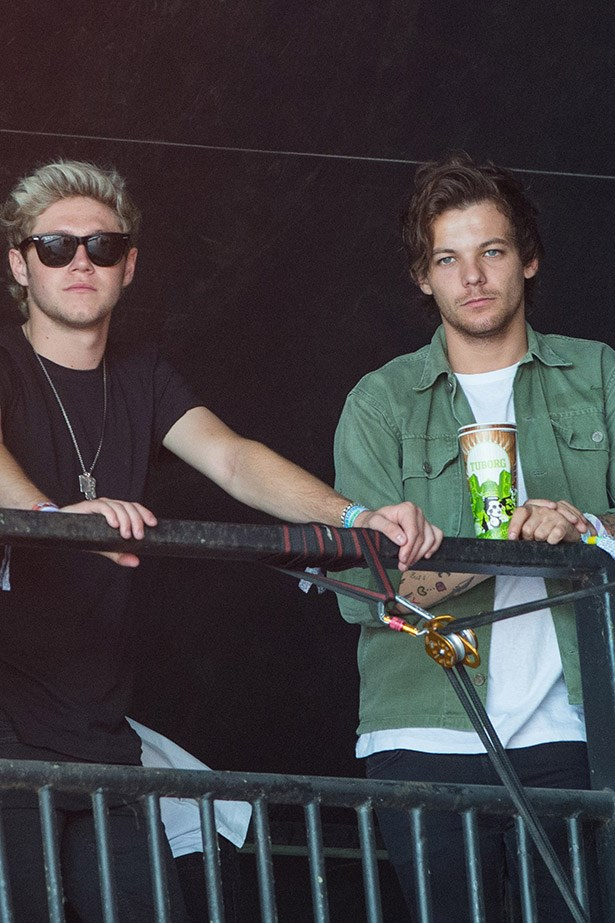 Niall Horan and Louis Tomlinson from One Direction.