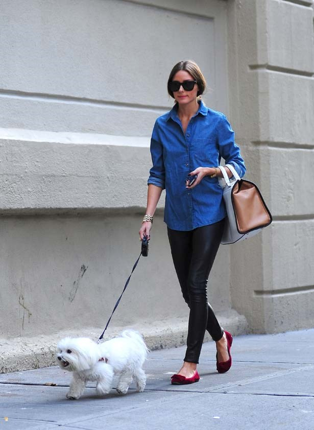 <p>September 25, 2012</p> <p>Olivia Palermo seen walking her pup Mr Bulter in Brooklyn.</p>