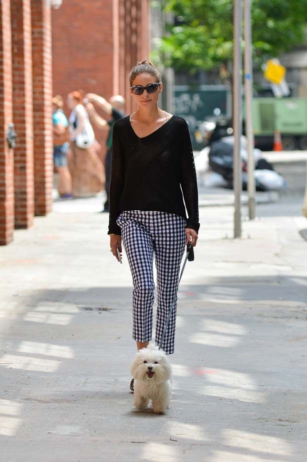 <p>June 12, 2013</p> <p>Olivia Palermo is seen walking her dog in New York City.</p>