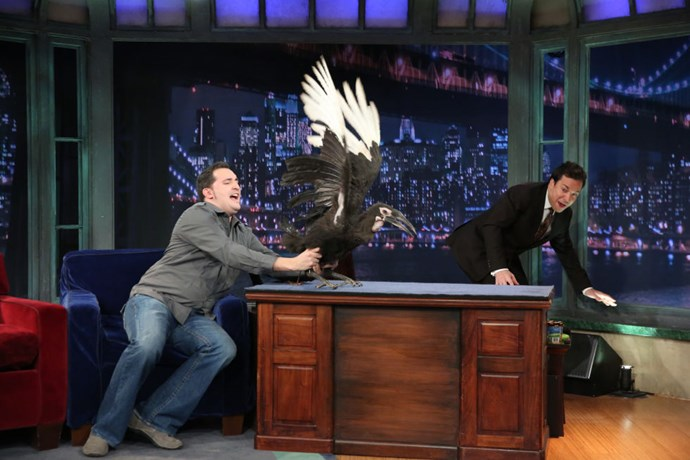 "JIMMY FALLON ""AKLJDLJSLJF."""