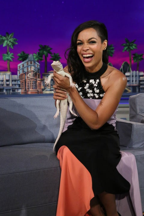 ROSARIO DAWSON That gator looks like it's just seen a ghost. GETTY