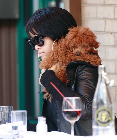 RIHANNA Bitch Better Have My Dog-Scarf.