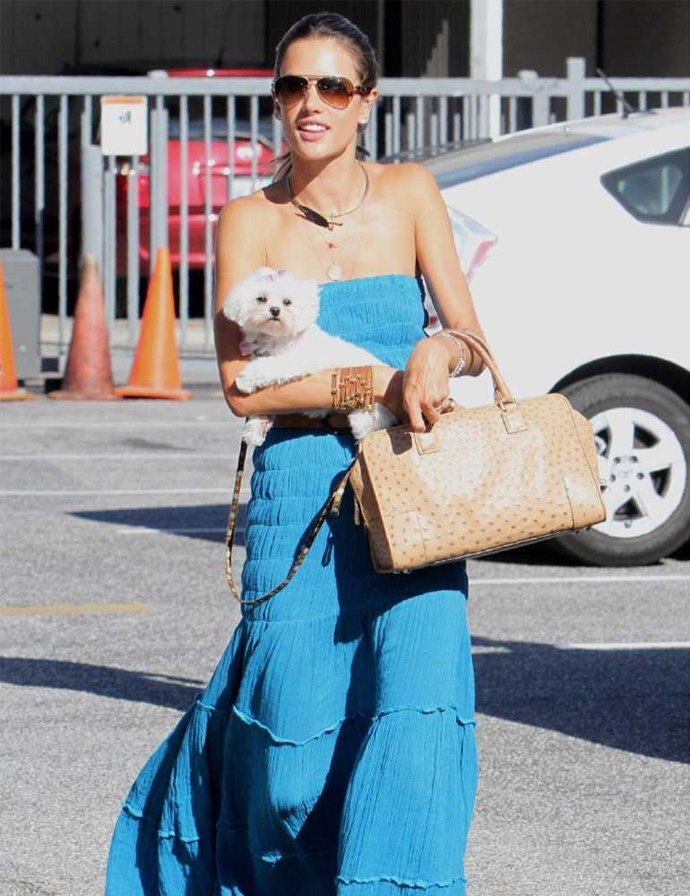 Alessandra Ambrosio with her cute Maltese pooch.