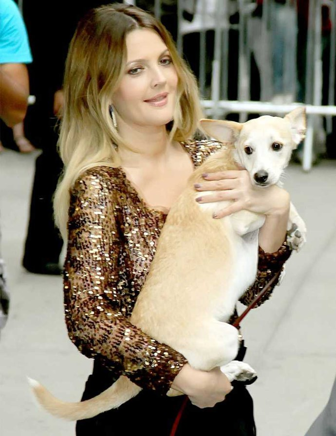 Drew Barrymore and Flossie.