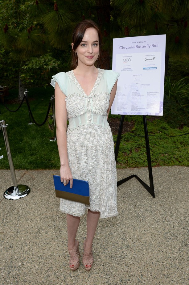 Dakota Johnson attends the 12th Annual Chrysalis Butterfly Ball in 2013 in a feminine dress and Céline clutch.