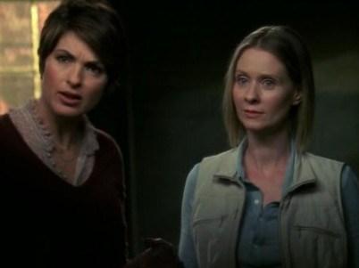 "CYNTHIA NIXON Law & Order: SVU, season 9, episode 1: ""Alternate,"" September 2007. GETTY"