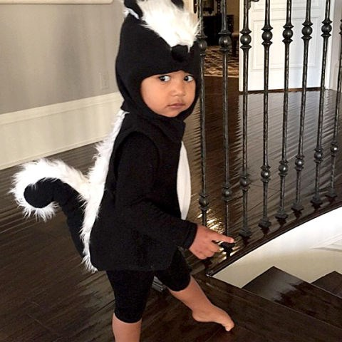 <strong>KIM KARDASHIAN AND KANYE WEST'S DAUGHTER, NORTH</strong> <br> As a skunk.