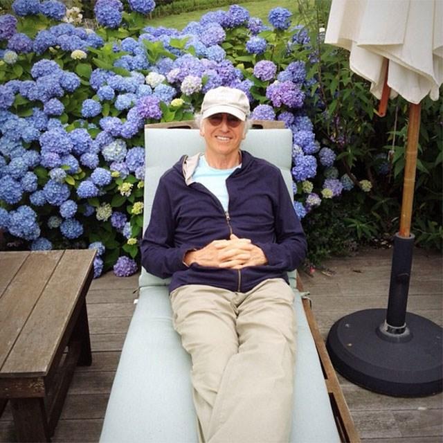 Larry David on a beautiful backdrop of hydrangeas.