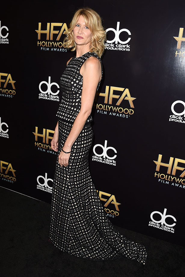 Laura Dern at the Hollywood Film Awards.