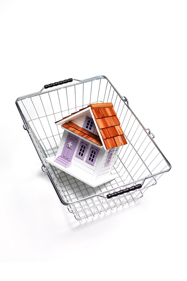 A toy house in a shopping basket.