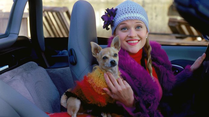Elle Woods and Bruiser Woods in 'Legally Blonde'.