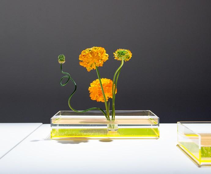 <em>An example of Ikebana by Takashi Kimura of Plantica</em>