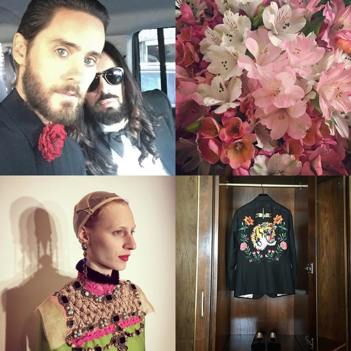 "<strong><a href=""https://www.instagram.com/lallo25/"">@lallo25</a></strong><br> A visual diary from Gucci's creative director Alessandro Michele.<br><br> — <a href=""https://www.instagram.com/genevra_leek"">@genevra_leek</a>, associate editor"