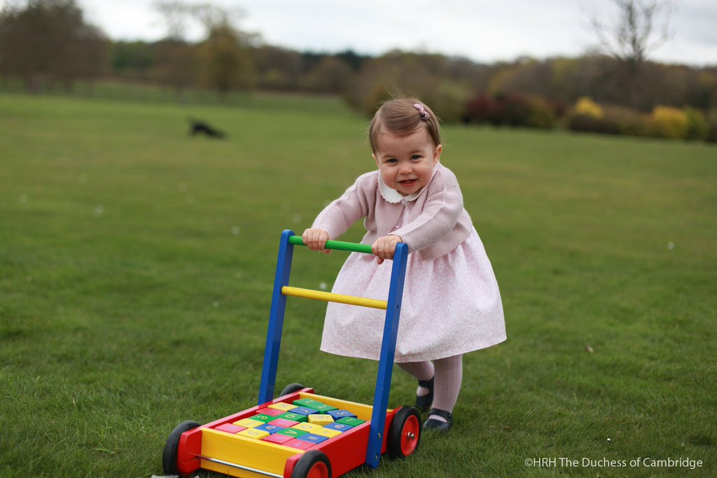Princess Charlotte: Photographs released to mark first birthday