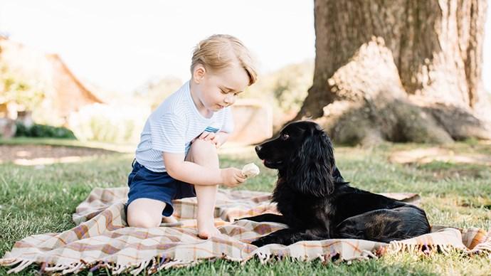 Prince George birthday portrait.