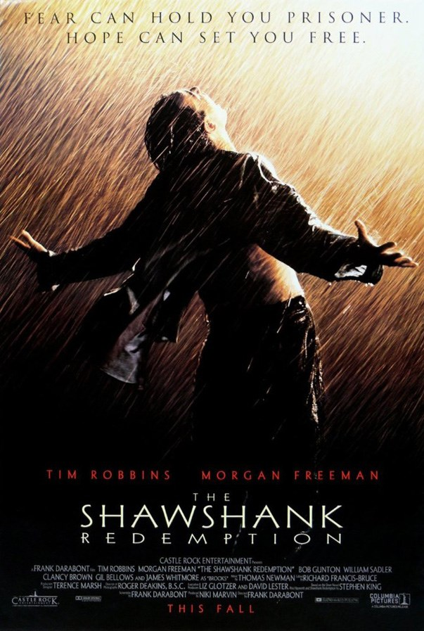 <p><strong><em>The Shawshank Redemption</em> (1994)</strong><p><br> One of the highest rated films on IMDB and Rotten Tomatoes, we're not sure we'll ever get over Andy and Red.