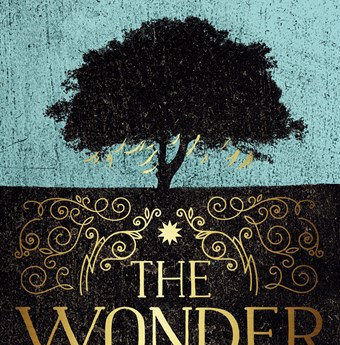 the wonder emma donoghue elle book club book of the month