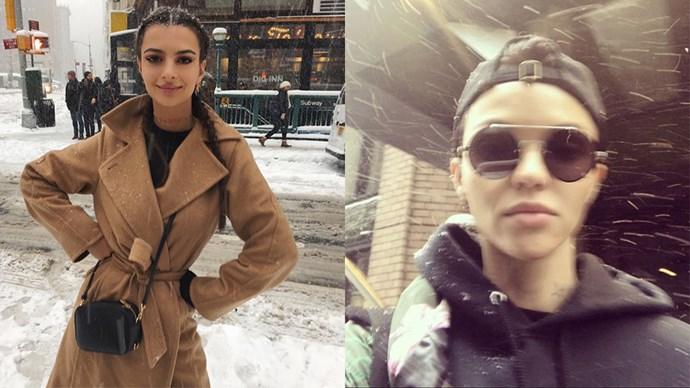 celebrities nyc snowstorm