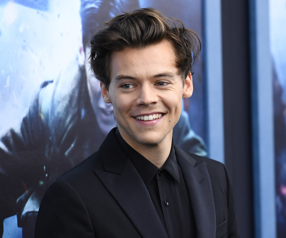 Harry Styles Is Reportedly Dating This Victoria's Secret Model