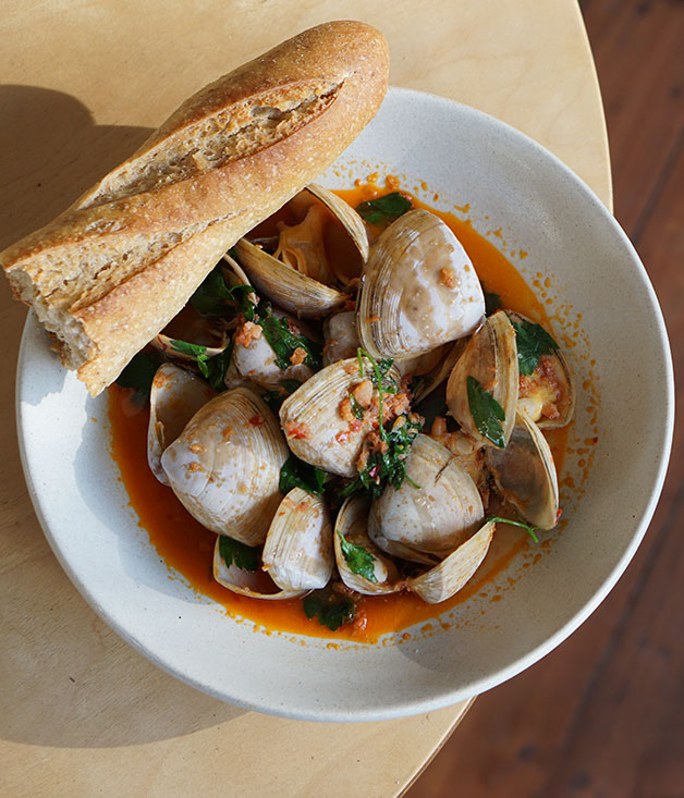 Clams, parsley, 'nduja, crusty bread