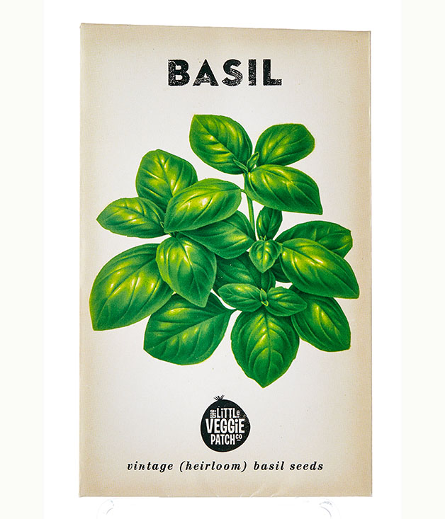 how to grow basil in australia