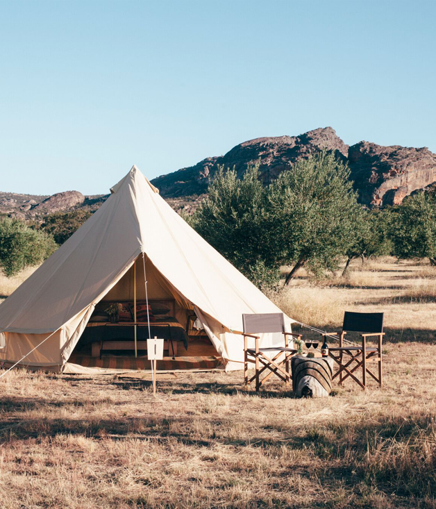 Sleep in a Grampians olive grove this autumn