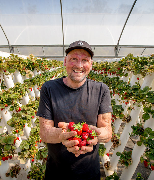 Guest chef Matt Golinski at Ricardoes Tomatoes and Strawberries