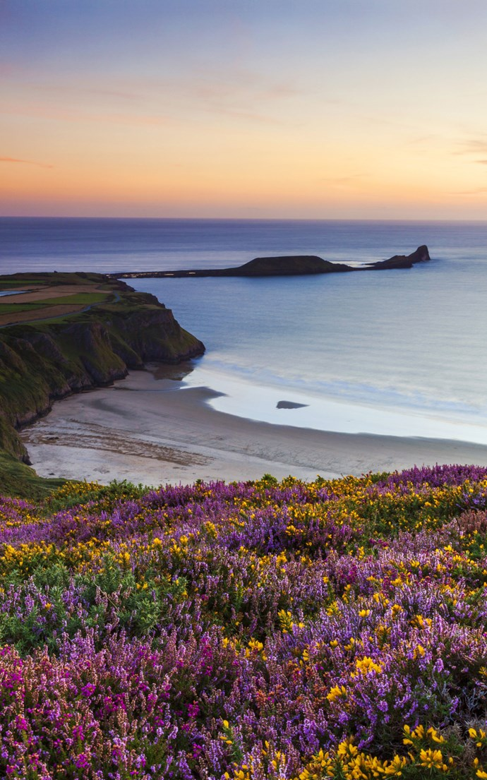 <p><strong>Rhossili Bay, Wales</strong> <p>The UK has some gorgeous beaches—even if the weather isn't ideal for sunbathing. Rhossili Bay on the tip of Gower Peninsula in Swansea is particularly pretty—just look at those blooms.