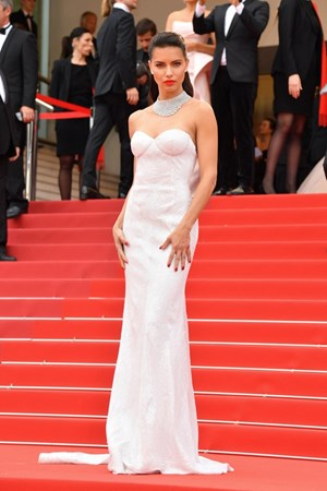 Cannes Adriana Lima (in Naeem Khan)
