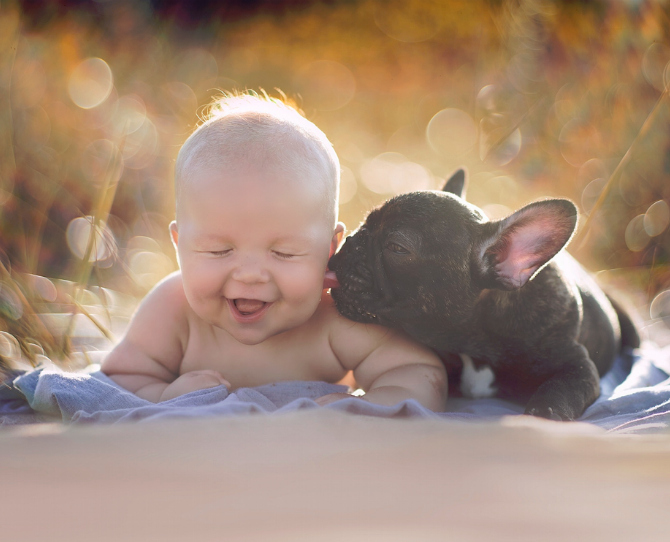 15 Adorable Baby and Pet Photos