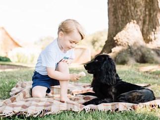 Prince George feeds his dog ice-cream