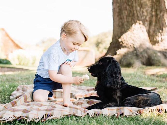Kids prefer pets over siblings
